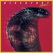 Blackfoot_-_Strikes